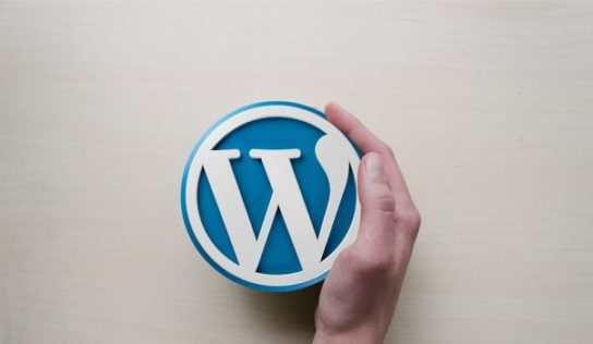 7 super and beneficial WordPress features You Didn't understand Existed