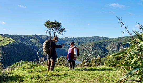 Hunt for the wilder aspect of new Zealand