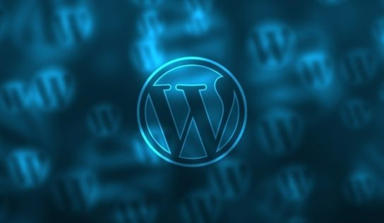 Instructions found out from WordPress assaults