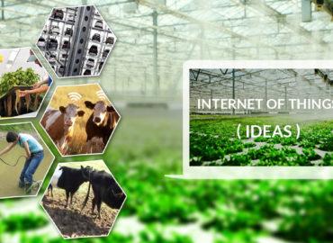 INTERNET ON THE FINGERTIPS OF FARMERS